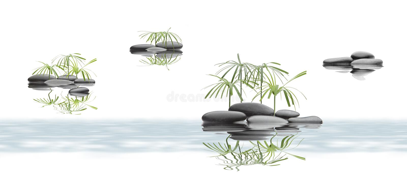 La stazione termale di rilassamento con acqua ed i fiori effettuano l'annata illustrazione vettoriale