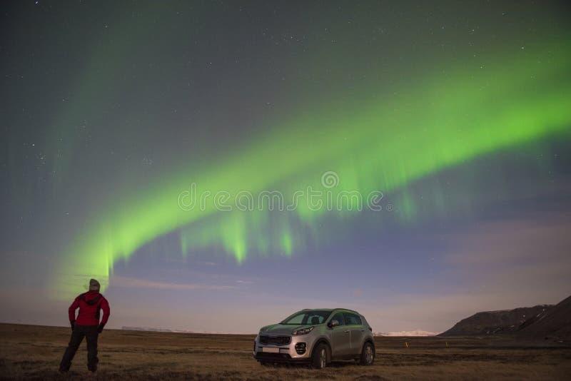 La stella artica polare del cielo di aurora borealis dell'aurora boreale in Vik immagine stock libera da diritti