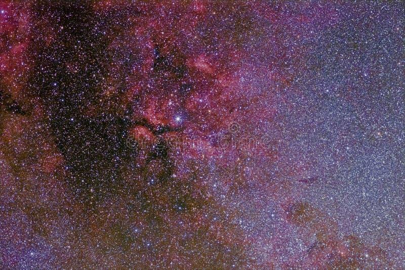 La stella Sadr in cigno e le sue nebulose complesse fotografia stock libera da diritti
