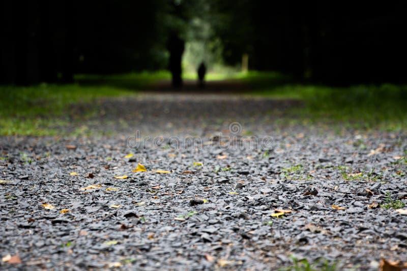 La strada è sparsa con le piccole pietre immagini stock