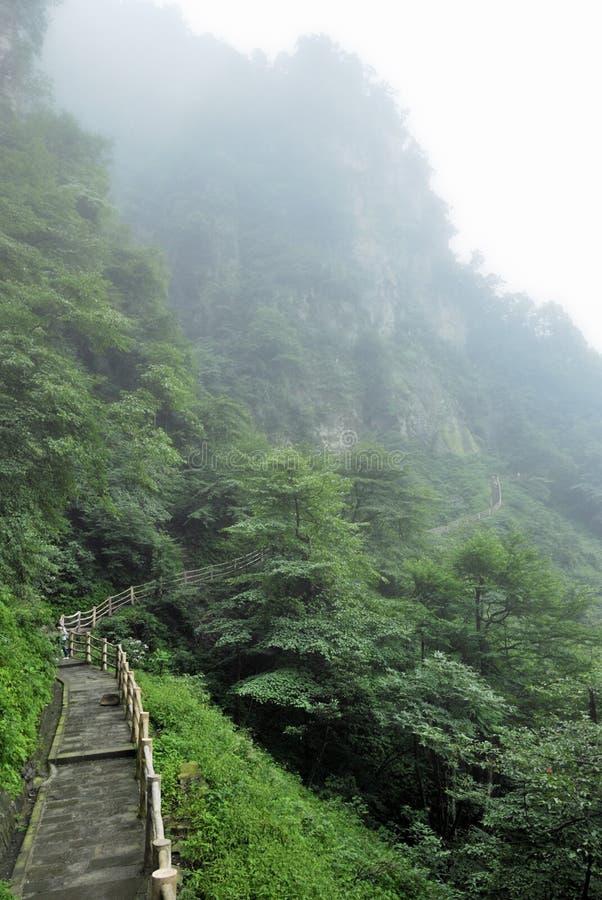 La strada alla cima della montagna di emei fotografia stock libera da diritti