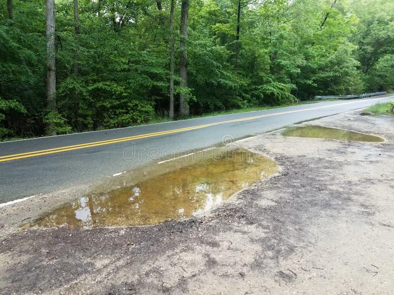 La strada asfaltata ed il lato della strada con le grandi pozze dell'acqua immagine stock libera da diritti