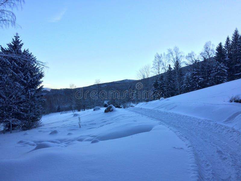 La strada attraverso la neve, mattina delle montagne immagine stock
