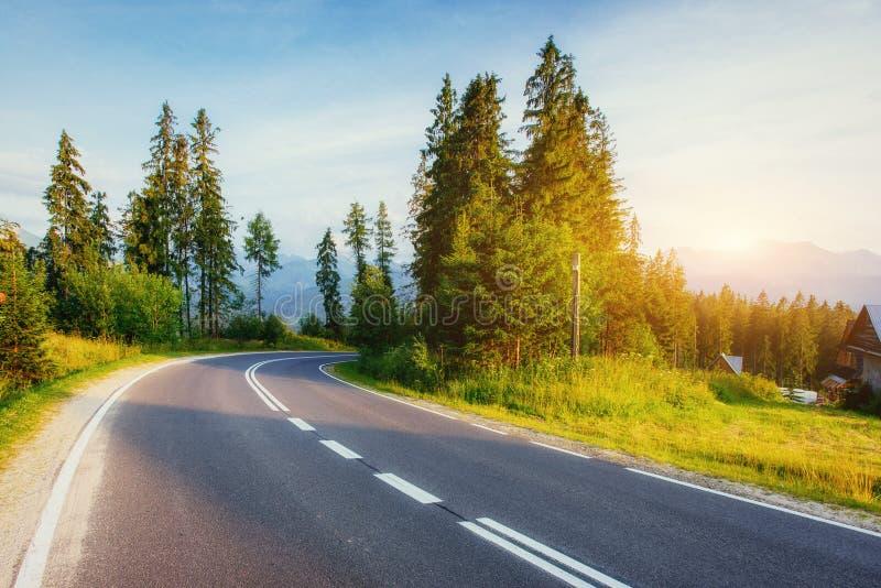 La strada conduce attraverso il legno alle montagne al tramonto fotografia stock