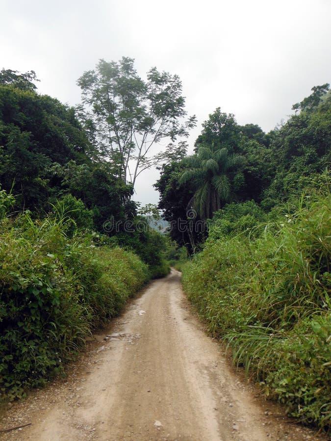 La strada dell'agricoltore in terra verde intorno a Semuc Champey fotografie stock
