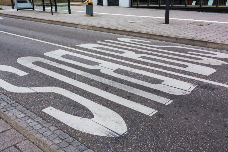 La strada delle marcature della sicurezza del bus dipinta allinea il pubblico Transportati dei vicoli immagine stock libera da diritti