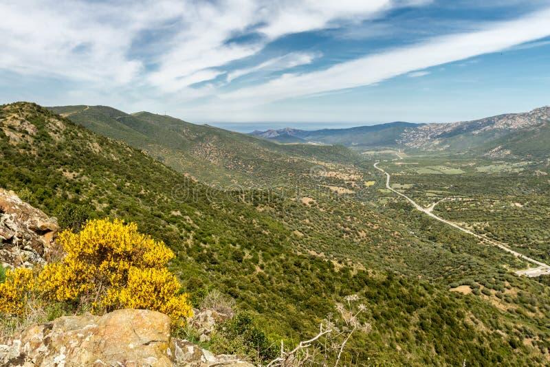 La strada N197 si dirige verso la costa in Corsica fotografie stock libere da diritti