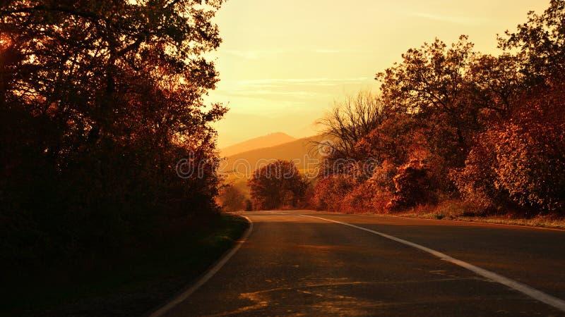 La strada nella campagna in autunno al tramonto nei toni dell'oro fotografie stock