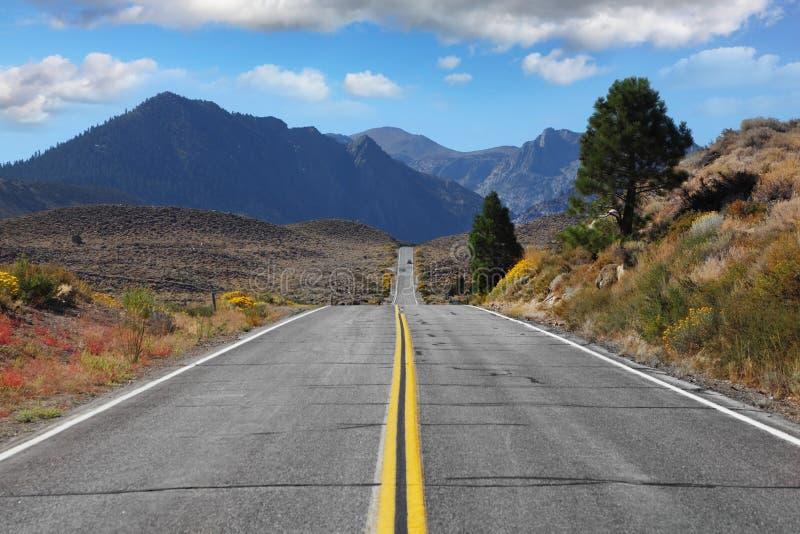 La strada passa attraverso il deserto fotografia stock