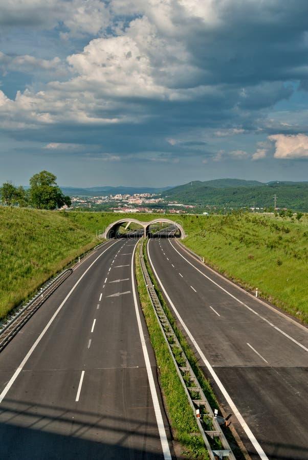 Strada principale vuota dell'asfalto con ecoduct fotografia stock libera da diritti