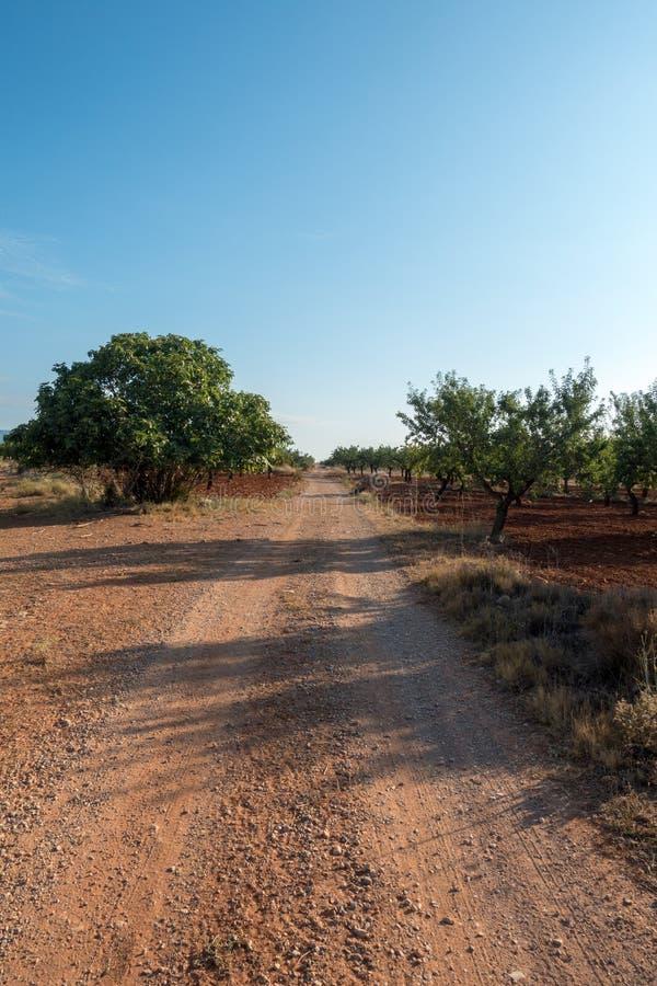 La strada a Santiago e via Augusta in Castellon fotografia stock