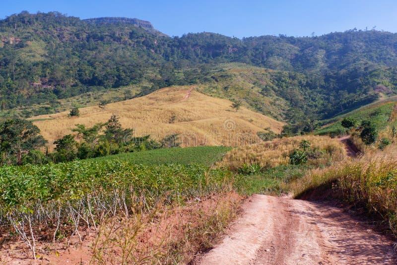 La strada va alla montagna fotografie stock libere da diritti