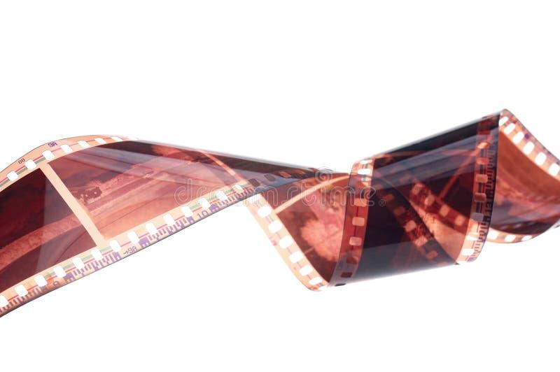La striscia di pellicola si rivolta il fondo bianco fotografia stock