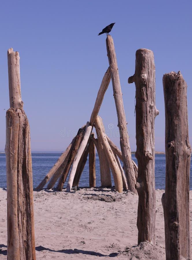 La structure en bois sur des saules échouent, Victoria, Canada images stock