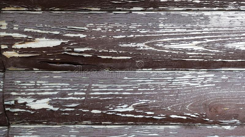 La struttura del bordo con la pelatura della pittura Priorit? bassa astratta per il disegno Brown con i bordi arrotondati bianchi immagine stock libera da diritti