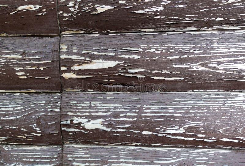 La struttura del bordo con la pelatura della pittura Priorit? bassa astratta per il disegno Brown con i bordi arrotondati bianchi fotografia stock libera da diritti