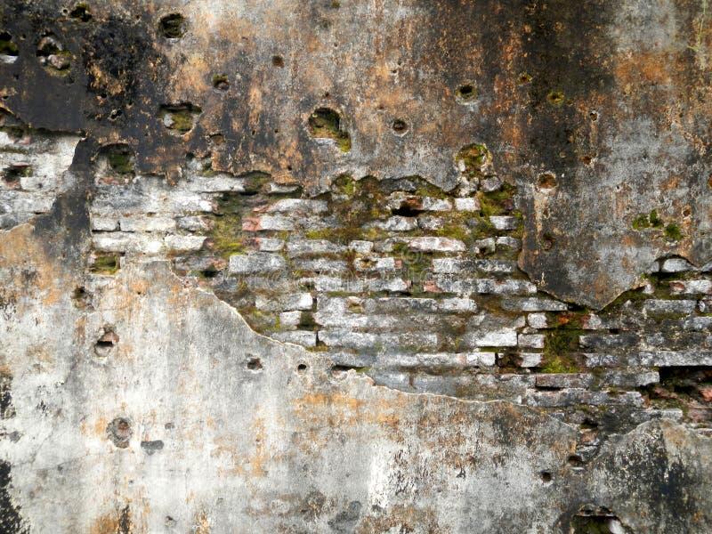 La struttura della parete della muratura di lerciume con muschio rende ed i fori di pallottola fotografia stock libera da diritti