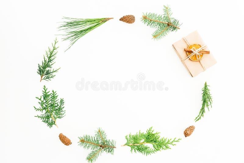 La struttura di feste di Natale con il contenitore di regalo, ogni verde si ramifica e pigne su fondo bianco Composizione in nuov fotografia stock