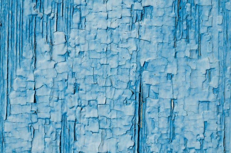 La struttura di pittura blu su legno immagine stock libera da diritti