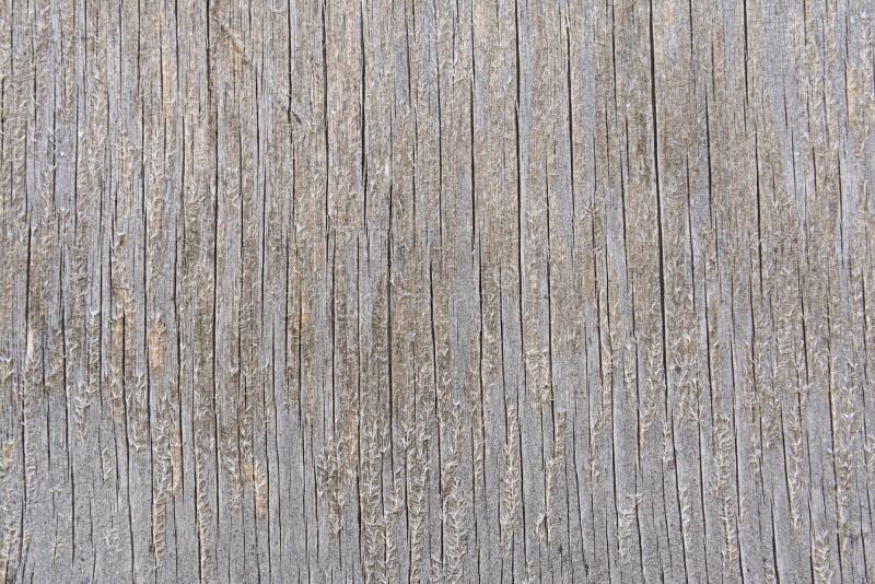 La struttura di un bordo di legno incrinato con le fibre sulla superficie fotografie stock libere da diritti