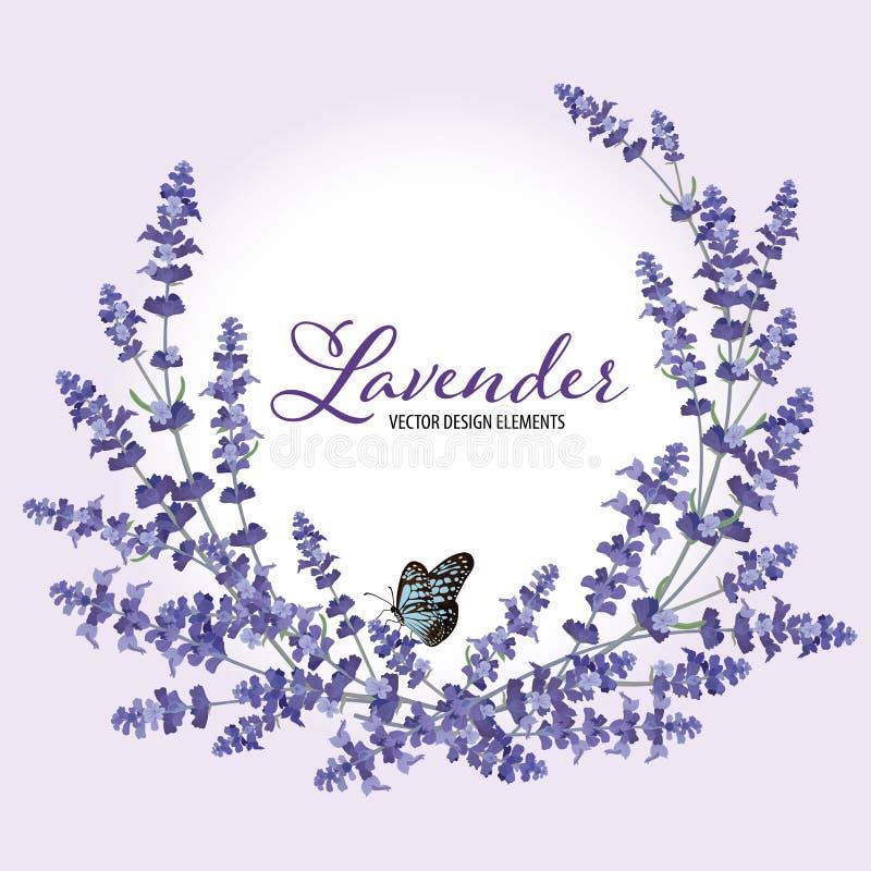 La struttura floreale con la lavanda di autunno fiorisce con la farfalla illustrazione di stock