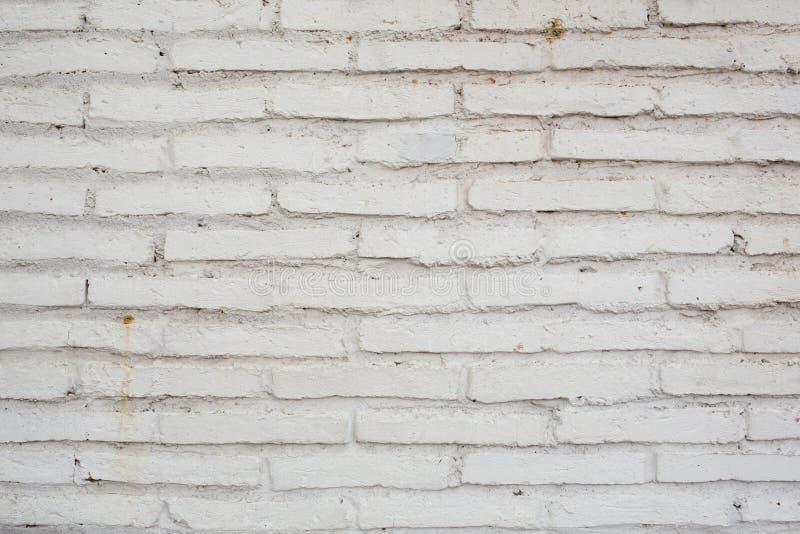 La struttura stagionata astratta ha macchiato il vecchio stucco grigio chiaro e l'età immagini stock libere da diritti
