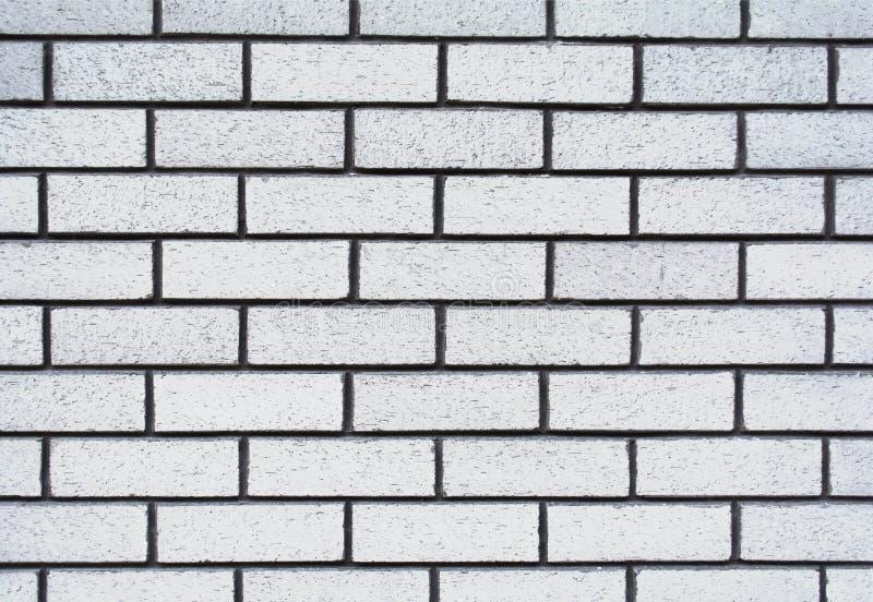 La struttura stagionata astratta ha macchiato il vecchio stucco grigio chiaro ed ha invecchiato il fondo bianco del muro di matto fotografie stock libere da diritti