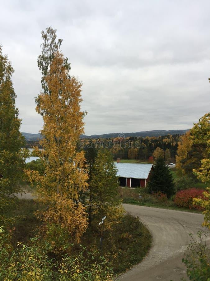 La Suède, automne, Medelpad, au nord de la Suède photographie stock