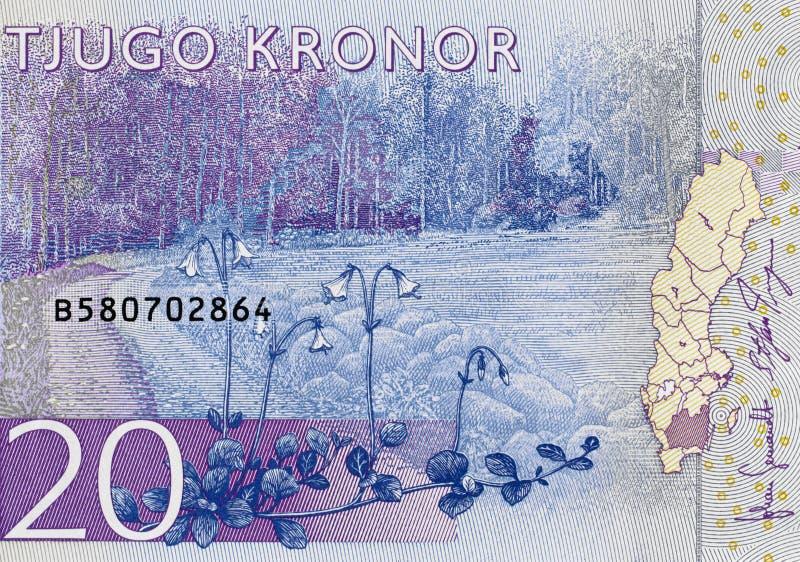 La Suède billet de banque 2015, fin de 20 couronnes suédoise d'argent  photographie stock libre de droits