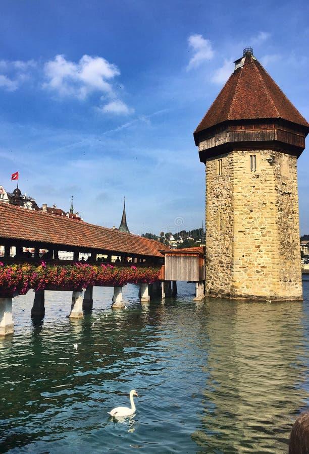 la Suisse lucern photos libres de droits