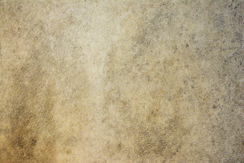 La superficie de cuero del tambor viejo, hace de fondo de la textura del cuero del búfalo foto de archivo libre de regalías
