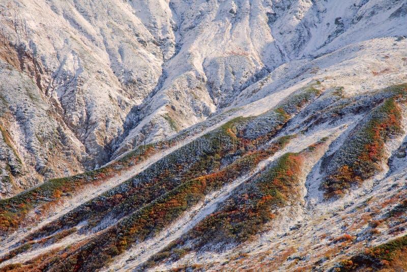 La superficie de las montañas cubiertas con nieve imagenes de archivo