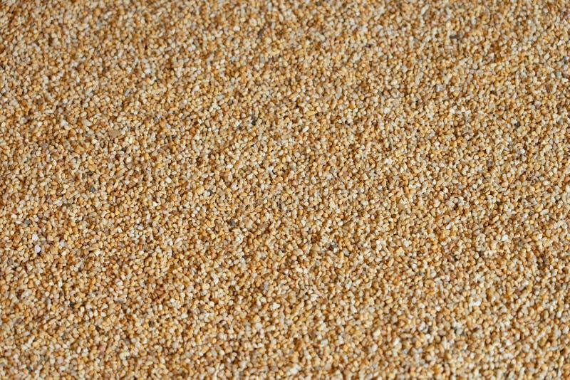 La superficie di pietra della piccola sabbia disegna il modello come curva di zen come immagine di sfondo Monti i vari media fotografia stock libera da diritti