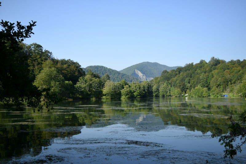 La surface du lac de forêt dans la perspective des montagnes images libres de droits