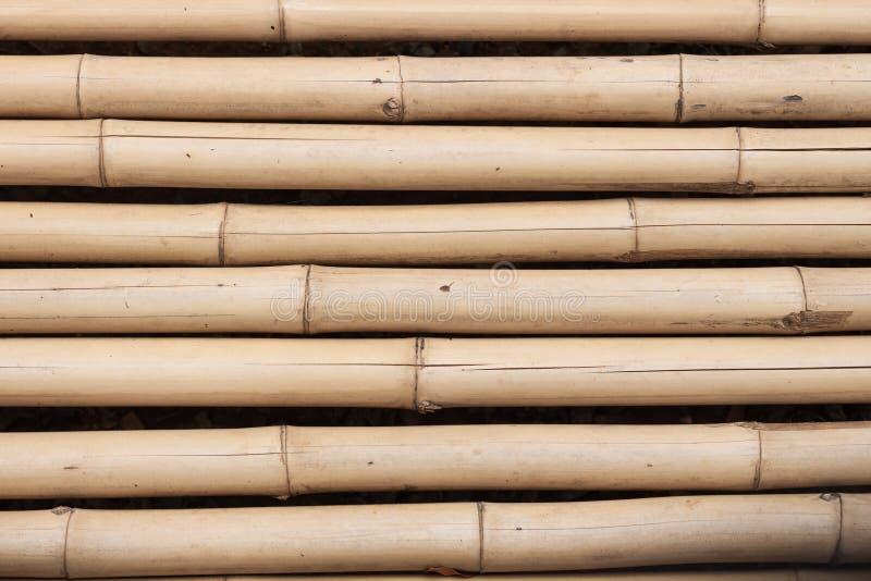La surface du plan rapproché en bambou photos libres de droits