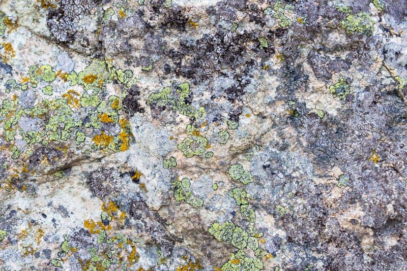 La surface en pierre de champignon, la pierre répand près du village de Beli Plast, Bulgarie photo stock