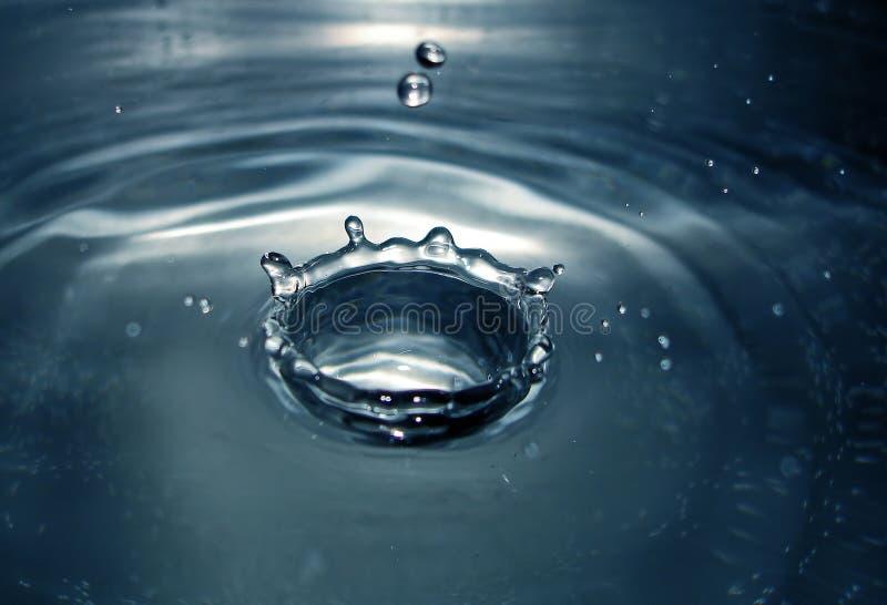 Download La tête photo stock. Image du doux, humide, liquide, trou - 741244