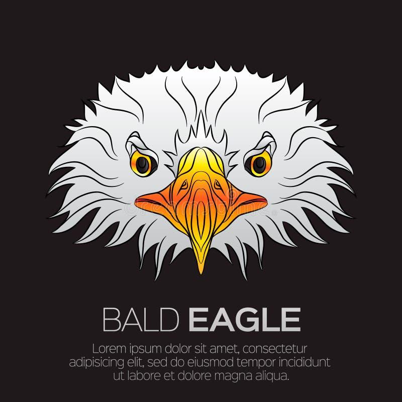 La tête de l'aigle chauve américain illustration libre de droits