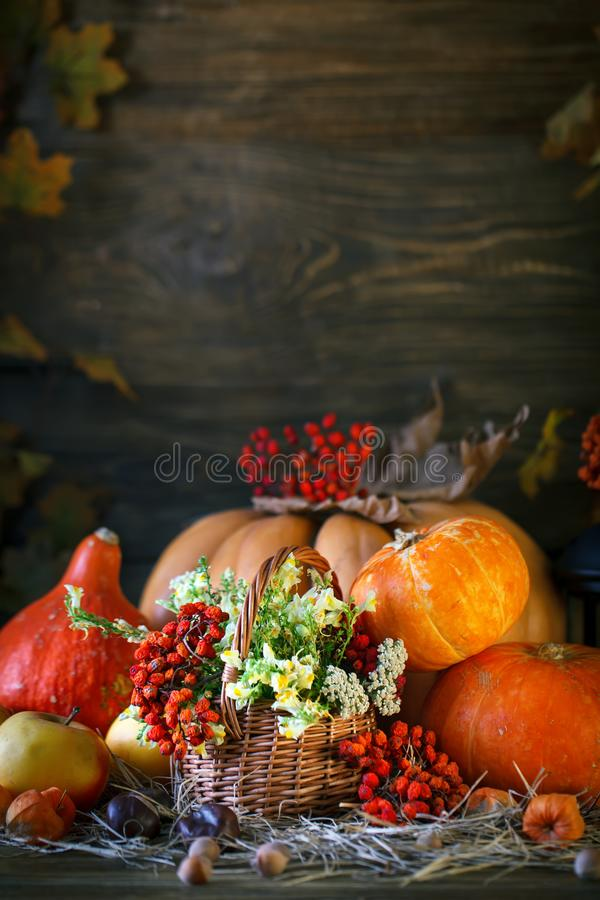 La table en bois a décoré sauvage avec des fleurs par des potirons et des feuilles d'automne Fond d'automne Jour heureux d'action images stock