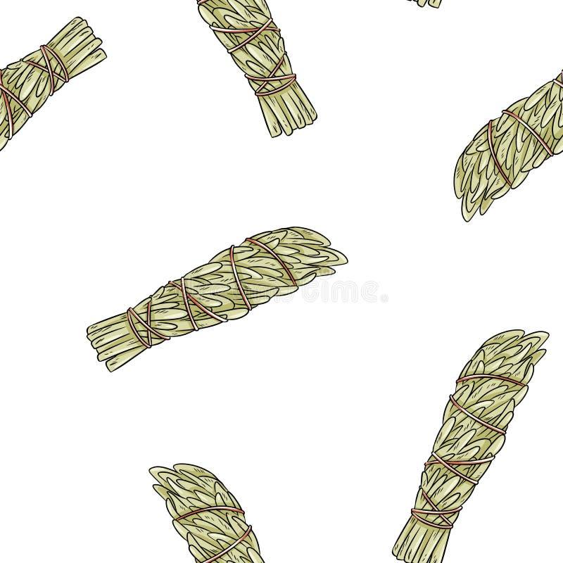 La tache sage colle le mod?le sans couture de boho tir? par la main Fond de texture de paquet d'herbe d'armoise commune illustration de vecteur