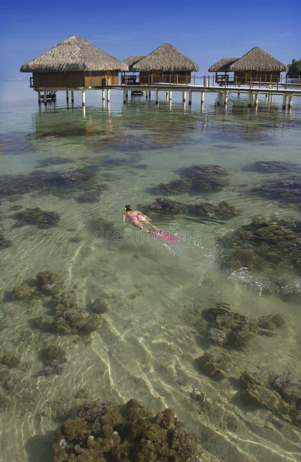 La Tahiti - Polinesia francese - South Pacific fotografie stock libere da diritti