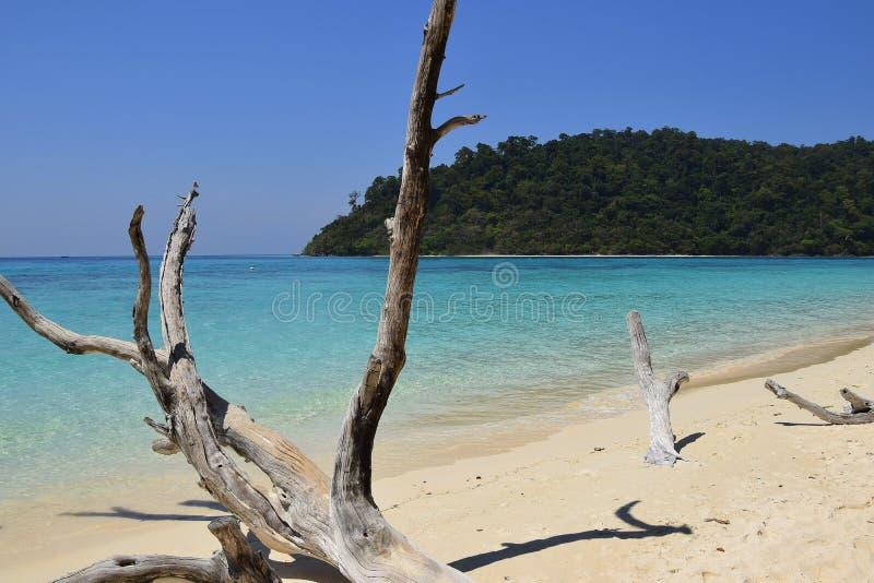 La Tailandia tranquilla immagine stock