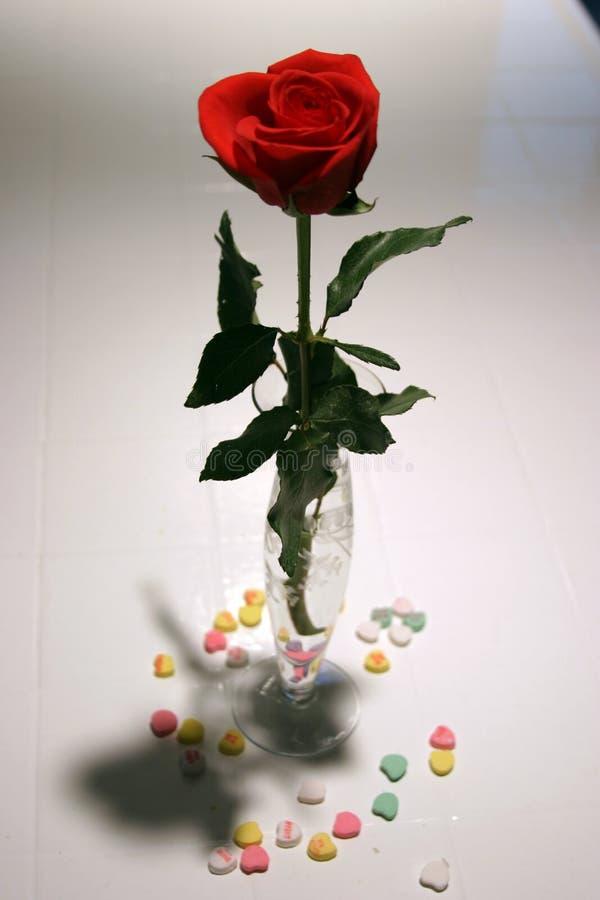 La tarjeta del día de San Valentín se levantó imagen de archivo libre de regalías