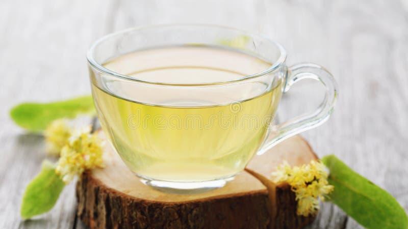 La tasse de thé frais faite à partir du tilleul part sur un support en bois photos libres de droits