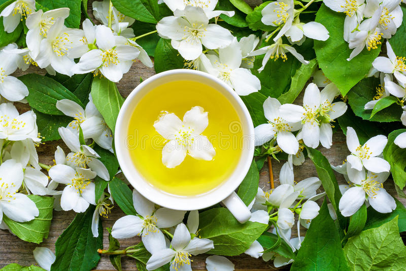 La tasse de tisane verte avec le jasmin fleurit au-dessus du fond de jasmin de nature photos stock