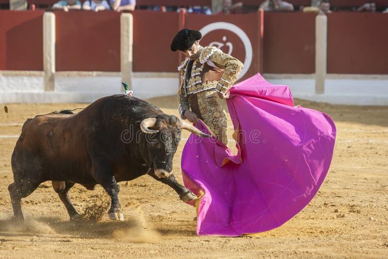 La tauromaquia española de Jose Luis Moreno del torero con la c imagenes de archivo