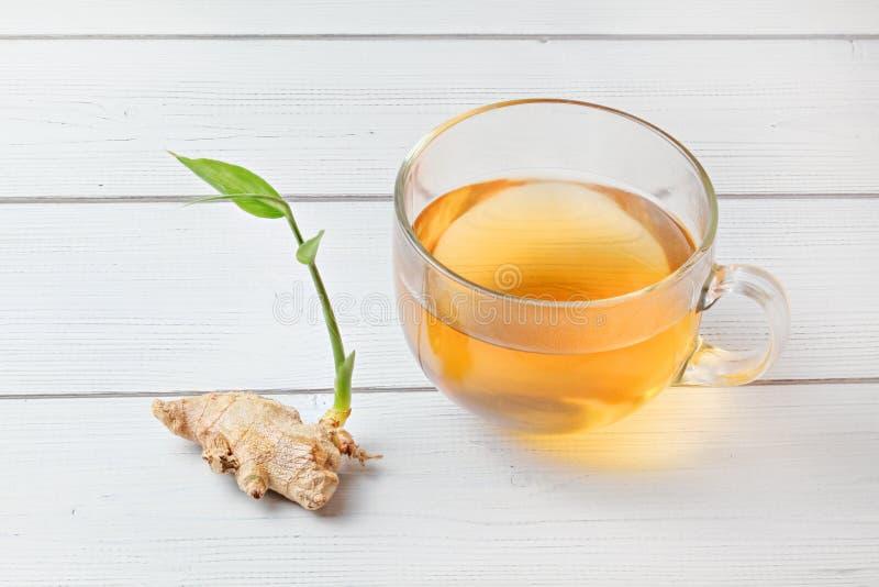 La taza de té ambarino recientemente preparado, vapor caliente hace descensos mojados minúsculos en el vidrio Raíz seca del jengi imagen de archivo