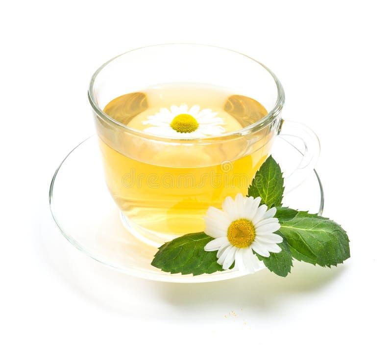 La taza transparente de té de manzanilla con las flores y la menta hojean imagen de archivo