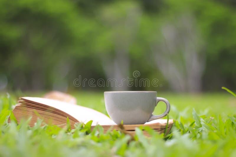 La taza y los libros de café en la hierba verde en luz del sol del verano parquean foto de archivo libre de regalías