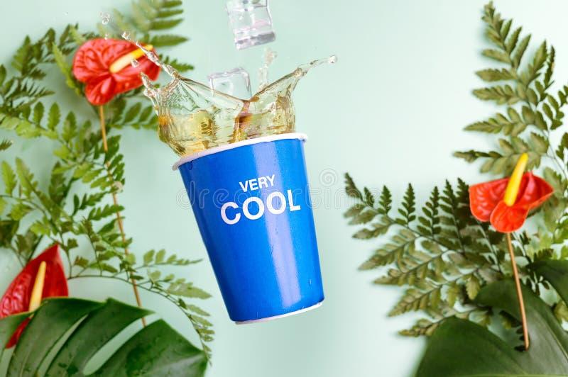 La tazza blu con tè spruzza su fondo tropicale con i fiori dell'anturio della calla, la felce e le foglie rossi di monstera Rinfr fotografia stock